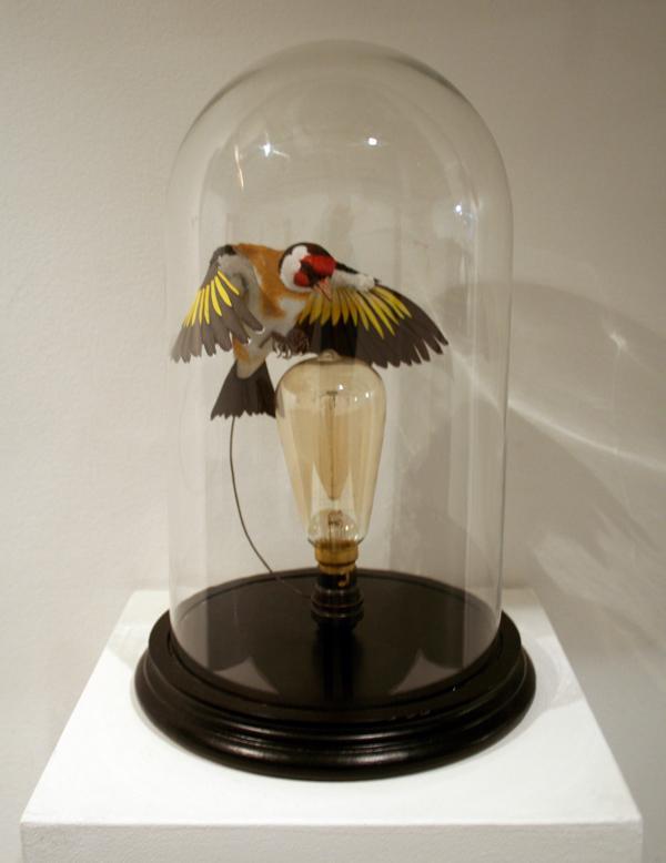 lampa Zack Mclaughlin