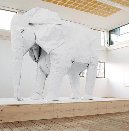 Projekt: słoń