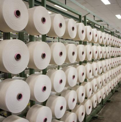 Z wizytą w Van Heek Textiles