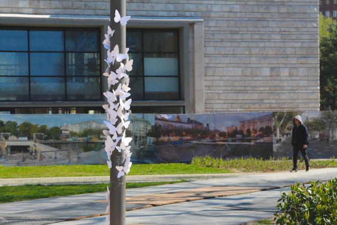 Papierowe motyle na wiosnę, na słupie w budapeszcie, koło hotelu, w którym mieszkała Sonia Bohosiewicz